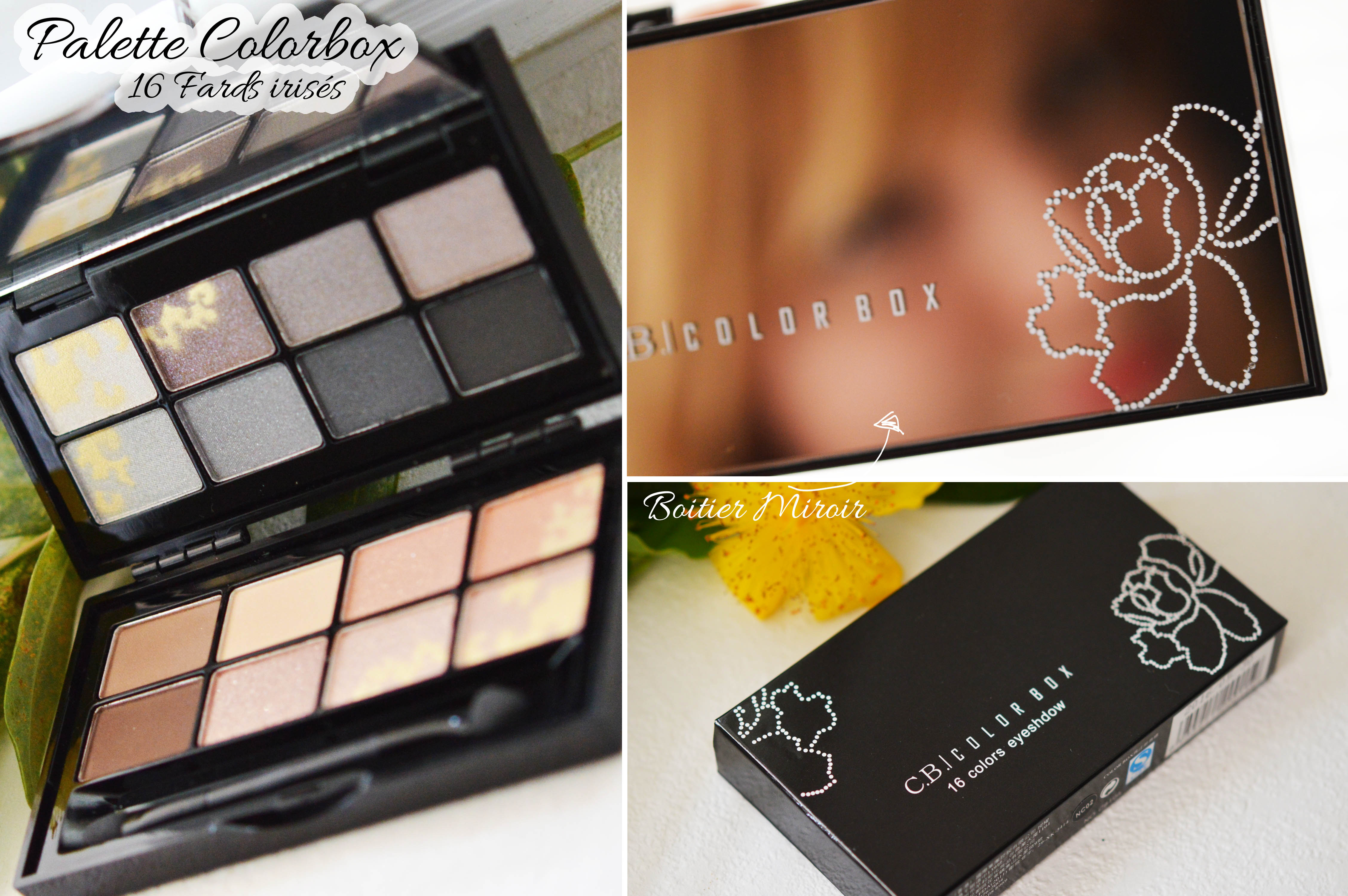 ALITTLEB_BLOG_BEAUTE_FAIRE_SON_BEAUTY_SHOPPING_PETIT_PRIX_EN_MODE_GEEKETTE_ON_VALIDE_OU_PAS_BORN_PRETTY_STORE_COLORBOX_PALETTE_16_TEINTES_IRISES_BOITIER_PACKAGING