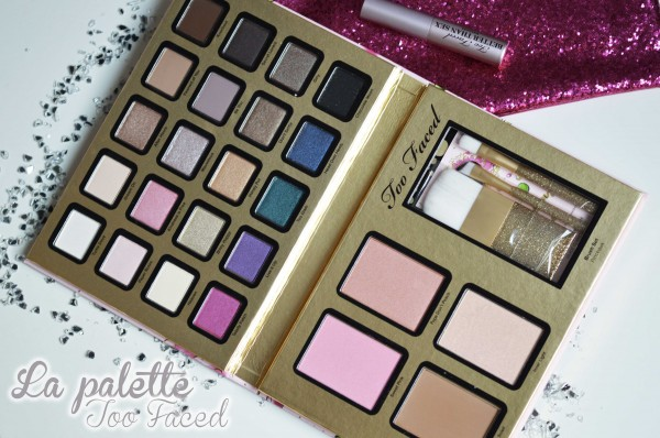 ALITTLEB_BLOG_BEAUTE_EVERYTHING_NICE_TOO_FACED_LA_PALETTE_QUI_PORTAIT_BIEN_SON_NOM_PALETTE_ZOOM
