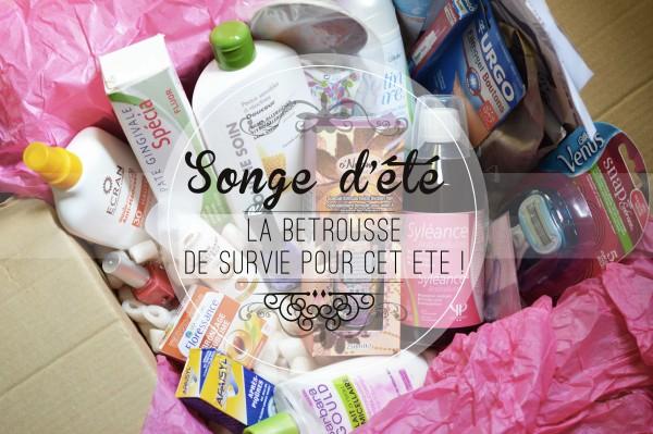 ALITTLEB_BL0G_BEAUTE_BETROUSSE_SONGE_D_ETE_LA_BETROUSSE_DE_SURVIE_POUR_CET_ETE