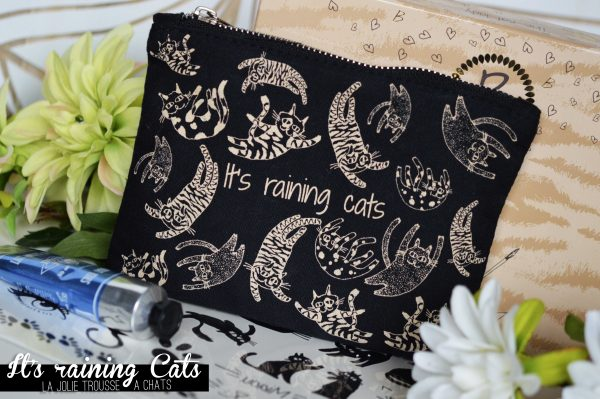 ALITTLEB_BLOG_BEAUTE_BEAUTIFUL_BOX_EDITION_AVRIL_ITS_RAINING_CATS_CONTENU_BOX_TROUSSE